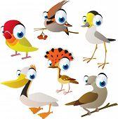 vector isolated cartoon cute animals set: birds: lovebird, waxwing, plover, pelican, dove, flycatcher