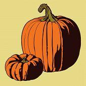 Pumpkin Vector.eps