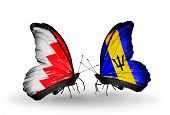 Two Butterflies With Flags On Wings As Symbol Of Relations Bahrain And Barbados