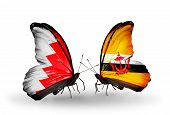 Two Butterflies With Flags On Wings As Symbol Of Relations Bahrain And Brunei