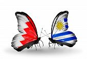 Two Butterflies With Flags On Wings As Symbol Of Relations Bahrain And Uruguay
