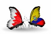 Two Butterflies With Flags On Wings As Symbol Of Relations Bahrain And Ecuador