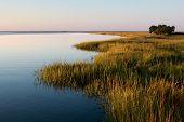 Frederica River Shore