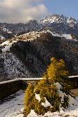 picture of italian alps  - a nice view of Italian alps Seriana Valley - JPG