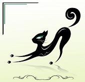 beautiful black cat, vector illustration