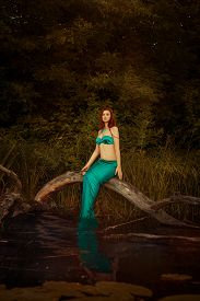 stock photo of undine  - Mermaid girl sitting on a tree in the swamp - JPG