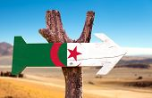 stock photo of algiers  - Algeria Flag wooden sign with dry background - JPG