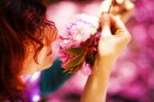 stock photo of lilas  - Young woman smelling a beautiful sakura blossom purple flowers - JPG