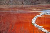 foto of greenpeace  - Pollution of a lake with contaminated water from a gold mine - JPG