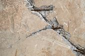 stock photo of reinforcing  - Cracked concrete surface with visible reinforcement and rich texture - JPG