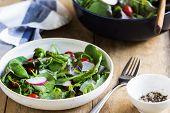 picture of salt-bowl  - Fresh leafy salad by big bowl of salad and sea salt  - JPG