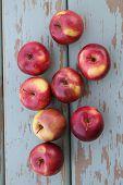 pic of spartan  - Rustic vertical image of Spartan apples on old aqua colored wood - JPG