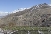 image of mustang  - Landscape of Muktinath village in lower Mustang District Nepal. This photo was shot in early morning. Area was cover by snow. - JPG