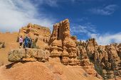 foto of hoodoo  - Striking rock formation with pine trees and a blue sky at Red Canyon in the Utah Canyon Country - JPG