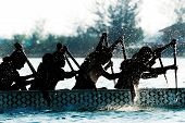 Постер, плакат: Dragon boat participant silhouetted by backlit