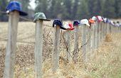 Caps On Fence Posts