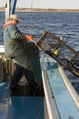 image of lobster boat  - Lobster fisherman hauling in a trap on the atlantic ocean