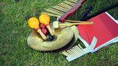 Música. Instrumentos de percussão