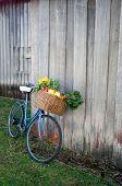 Fahrrad und Gemüse