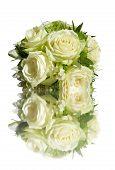 Bride'S Roses