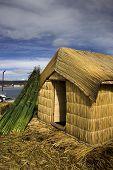 Reed Hut In Peru