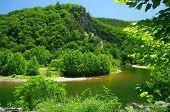 Appalachian Springtime