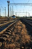 Railroads And Grass