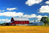 stock photo of red barn  - Rural lanscape with red barn in rural Ontario Canada - JPG