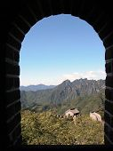 Great Wall Through A Window