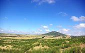 Landscape Of Field Near Of  Mertola, Portugal.