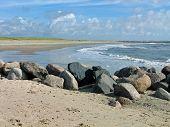 West Coast Of Denmark