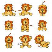 Cute Lion Set