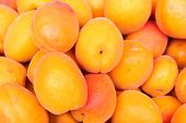 Showcase With Fresh Sweet Apricots On The Street Market. Close-up. Fruits Of The Store. Spontaneous  poster