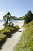 beautiful sandy pathway to beach
