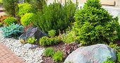 Landscaping In Home Garden. Beautiful Natural Landscape Design With Flower Beds In Summer. Panoramic poster