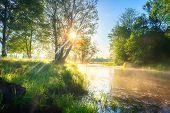 Summer Morning River Nature. Bright Sun On Riverside. Green Trees In Sunlight On River Shore. Scenic poster