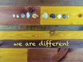 Seashells Of Various Sizes And Shapes - Concept Of The Union Of Differences - On The Wooden Table Tr poster