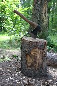 Chop Firewood For A Shashlik