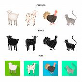 Vector Illustration Of Breeding And Kitchen Sign. Collection Of Breeding And Organic Vector Icon For poster