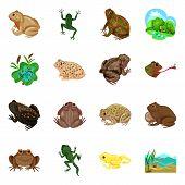 Bitmap Design Of Frog And Anuran Logo. Set Of Frog And Animal Stock Bitmap Illustration. poster