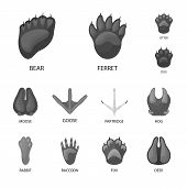 Isolated Object Of Wildlife And Trace Icon. Collection Of Wildlife And Walk Vector Icon For Stock. poster
