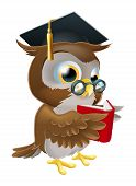 stock photo of convocation  - An illustration of a wise owl on a stack of books reading wearing glasses and a mortar board convocation hat - JPG