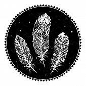 Plumas ornamentales étnicos