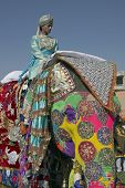 Elephant Festival, Jaipur, India
