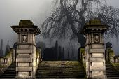 picture of headstones  - Spooky old cemetery on a foggy day - JPG