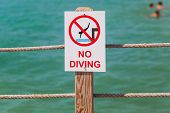 No Diving Sign On The Pier