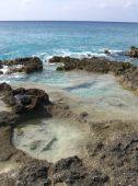 Rock Tide Pools