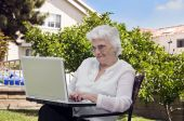 Senior Woman Sitting In The Garden At Home And Using A Laptop