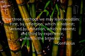 Bamboo and quote by Confucious -