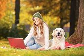 Young female in a park with her labrador retriever dog working on a laptop